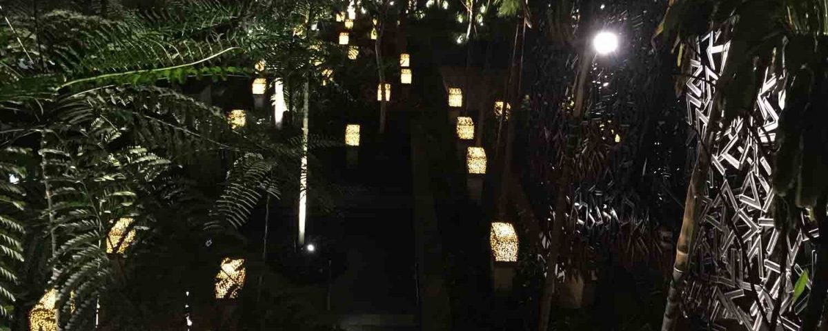 Decorative Lighting 15